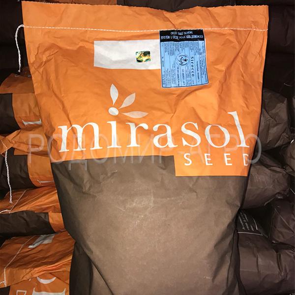 Семена подсолнуха Мирасол (Mirasol Seed) от официального дилера на территории Украины