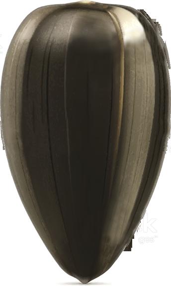 Семена подсолнечника Мирасол