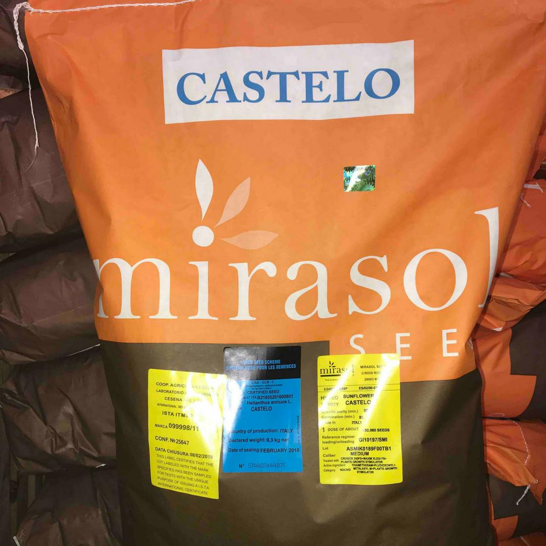 Подсолнечник Мирасол Кастело