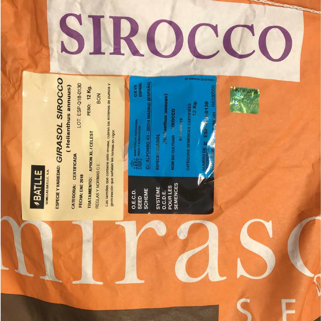 Подсолнечник Мирасол Сирокко