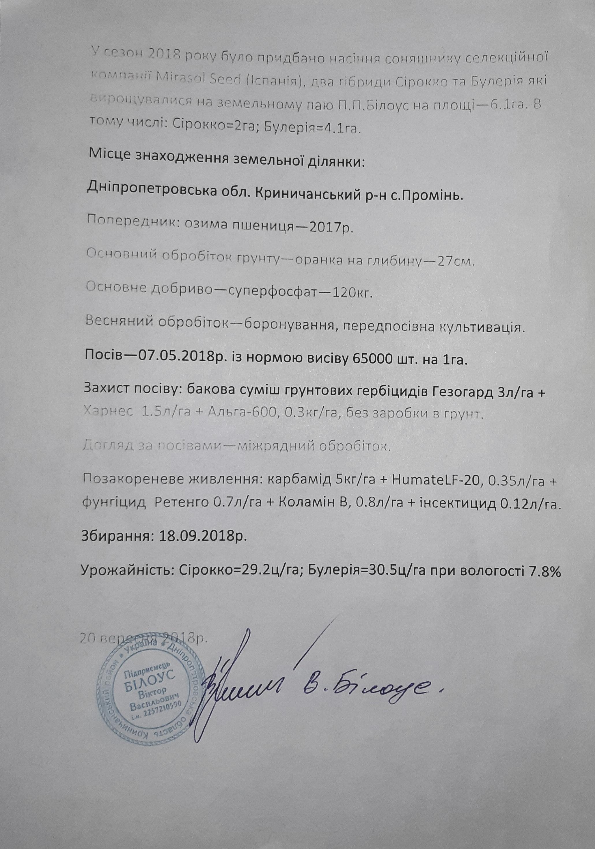 Подсолнечник Булерия ТМ Мирасол